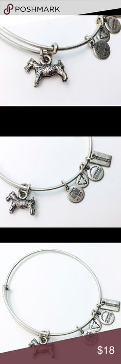 Alex and Ani Monopoly Dog EWB RS New with no tags!!                                                        Pictures by me!! Alex & Ani Jewelry Bracelets