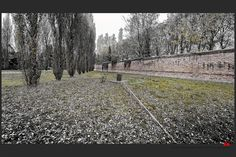 https://flic.kr/p/BrPsua | Autumn at the Jewish cemetery in Ferrara - Giorgio Bassani grave | © This photo is copyrighted by the photographer and may not be used without permission.