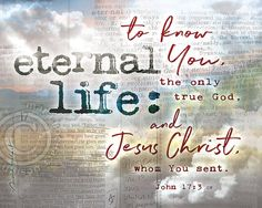 Eternal Life John 16 33, Christian Artwork, Overcome The World, My Bible, Jesus Christ, Overlays, Knowing You, Positivity, Writing
