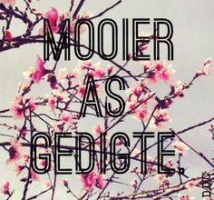 Mooier as gedigte, afrikaans quote