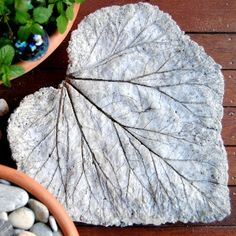 A rhubarb leaf was the mold for this step stone, but any large leaf will do. Using Portland cement, frost the leaf like a cake. Add a layer of wire for reinforcement and frost again. After the concrete has cured, remove the green leaf to reveal a beautiful sculpture—that you can walk on!