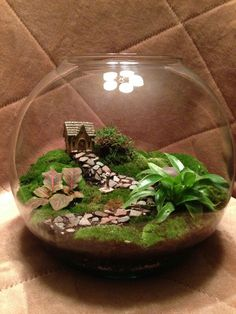 Custom anniversary terrarium I built today! Message if interested!