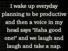 "I wake up everyday planning to be productive and then a voice in my head says ""Haha good one!"" and we laugh and laugh and take a nap."