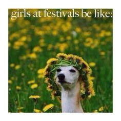 Girls at festivals be like....