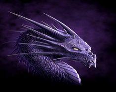 http://images2.fanpop.com/image/photos/13900000/Dragon-Wallpaper-dragons-13975574-1280-1024.jpg