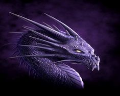 dragons | Dragon-Wallpaper-dragons-13975574-1280-1024