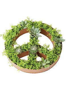 Shallow Planter: Peace Sign Dish Planter | Gardeners.com