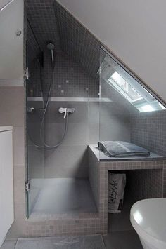 Small walk in shower, with storage or space for a litter box.