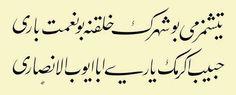 Yetişmez mi bu şehrin halkına bu nimet-i Bârî Habîb-i Ekrem'in yâri, Ebâ Eyyûb el-Ensârî Lâ-edrî ----------- SametY.