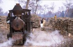 Changa Manga Forest Railway : ALL THINGS PAKISTAN