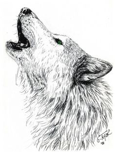Howling Wolf by Gayle Taylor on ARTwanted