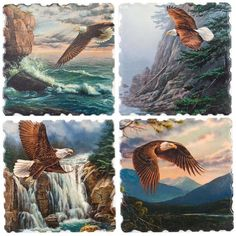Highland Graphics - Eagles Majestic Soaring 4 Pack Coaster Set Highland Graphics http://www.amazon.com/dp/B00FA7I6G8/ref=cm_sw_r_pi_dp_hLTuub0K1H2S3