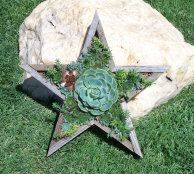 One of our newest shapes. A star is born!