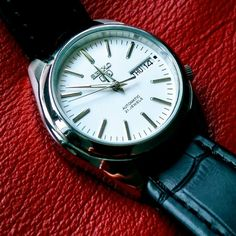 Seiko Women's Analog Display Analog Quartz Two Tone Watch – Fine Jewelry & Collectibles Stylish Watches, Watches For Men, Wrist Watches, Seiko 5 Automatic Watch, Seiko Mod, Seiko Watches, Beautiful Watches, Black Canvas, Stainless Steel Watch