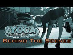 Achievements: Behind The Scenes