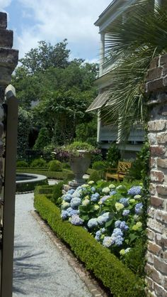 Gorgeous garden on Meeting St. Charleston, SC - Weathered brick, neatly trimmed boxwood, and hydrangeas are my idea of perfection.
