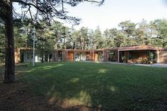 Modern one-storey residence surrounded by pine trees
