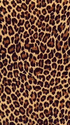 Leopard Print Wallpaper, Leopard Print Background, Animal Wallpaper, Iphone Wallpaper 4k, Sf Wallpaper, Pattern Wallpaper, Walpaper Iphone, Wallpapers Android, Hd Desktop