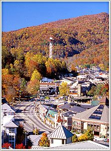 This link is your comprehensive guide to all Gatlinburg Tennessee information.