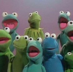kermit is the love of my life. i want a kermit puppet SO FUCKIN BAD Sapo Kermit, Sapo Meme, Amy Sedaris, Fraggle Rock, Rainbow Connection, Frog And Toad, Jim Henson, Jane Austen, Reaction Pictures