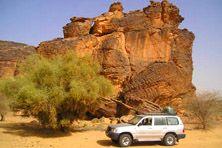 Enjoy 4 days #sahara #desert and go adventurous these holidays.
