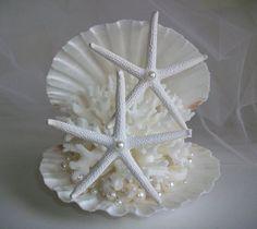 Shell Coral Starfish Pearl Beach Theme by SeashellBeachDesigns