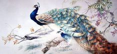 Peacock, silk hand embroidered art, Chinese suzhou embroidery painting, hand stitiched thread artwork, Su Embroidery Studio