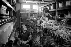 Alex Dowsett getting some spare parts out of the candyshop/SKY-stock by kristof ramon, via Flickr