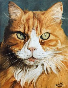Custom Cat portrait, Pet portrait, Cat Painting - oil painting on stretched canvas, from your photographs
