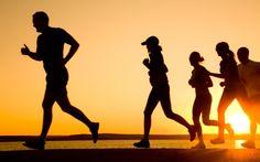 Better Health and Fitness: Steve Misencik