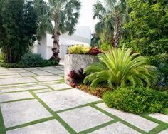 Hollywood Garden-by Raymond Jungles