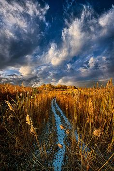 """The Secret Path"" Wisconsin Horizons by Phil Koch. Lives in Milwaukee, Wisconsin, USA. http://phil-koch.artistwebsites.com https://www.facebook.com/MyHorizons"