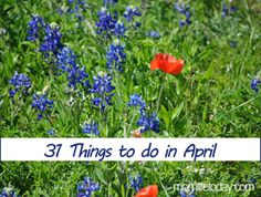 Fun things to do in April... we'll see if these apply to an Idaho April...