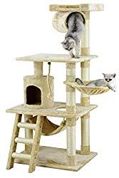 Go Pet Club 62 Cat Tree Condo Furniture Beige Color *** You can get more information by clicking the picture. (This is an affiliate link). Cat Tree House, Cat Tree Condo, Cat Condo, Tree Furniture, Condo Furniture, Cool Cat Trees, Cool Cats, Cat Climber, Casa Anime