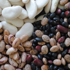 Beans are high in fiber, low in fat, and easy on the wallet, which makes these versatile legumes the latest Greatist Superfood.