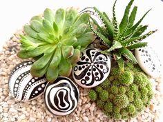 les galets peints pour décorer un terrarium de plantes succulentes