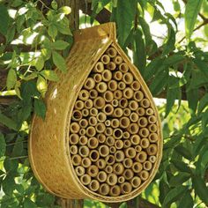 Give your organic garden a boost by providing a home for the local mason bees.  The mason bee is slightly smaller than a honey bee and are excellent pollinators.