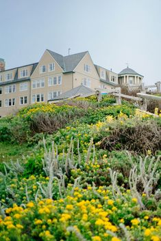 Back of The Ritz-Carlton Half Moon Bay Fort Mason, California Travel Guide, Half Moon Bay, Tap Room, Beer Garden, Best Places To Eat, Coastal Cottage, At The Hotel, Stunning View