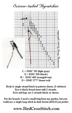 flycatcher cross stitch pattern