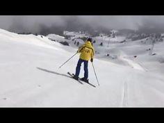 Skiing, Ski