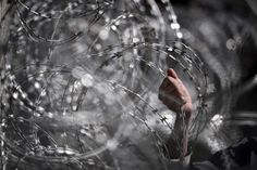 A migrant grips razor wire at a gate on the Greek-Macedonian border, near the Greek village of Idomeni, on March where thousands of people are stranded. Photography Articles, Amazing Photography, Spiegel Online, Powerful Images, Press Photo, Hold On, How To Memorize Things, Greek, Macedonia