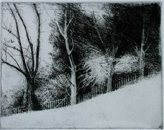 Four Trees by Bill Murphy Etching ~ x