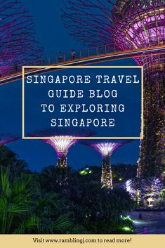 Wow! Singapore Travel Guide Blog To Exploring Singapore. A melting pot of culture, Singapore's diversity is a huge part of what makes it so incredible. From ethnic enclaves, each with its own traditions, to shiny skyscrapers that soar in the skyline, the city boasts an enticing blend of old and new.  With so much to see and do in Singapore. A visitor to Singapore will never be bored. The aim of this Singapore Travel Guide Blog is it can cover the basic information and things to do in…