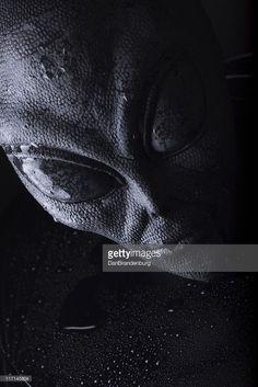 Dark alien head