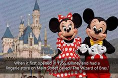 for more visit, https://www.onmogul.com/articles/50-fun-facts-about-disney-parks