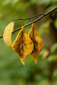 Leaf earrings felted of yellow wool - long earrings with leaves - fall earrings - autumn jewelry - yellow earrings - autumn earrings Yellow Earrings, Leaf Earrings, Felted Wool Crafts, Felt Leaves, Wet Felting, Needle Felting, Yellow Leaves, Fall Jewelry, Weaving Art