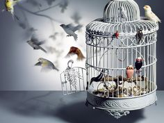 vogue accessory Photographic Studio, Creative Inspiration, Spa, Vogue, En Vogue