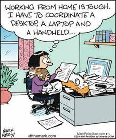 Dennis the Menace Cartoon for Cat Jokes, Funny Animal Memes, Funny Animal Pictures, Funny Cats, Funny Animals, Cat Humour, Online Comics, Cat Comics, Photo Chat