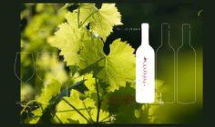 Vida Family Wine Estate | Szekszárd – Hungary Hungary, Herbs, Wine, Herb, Medicinal Plants