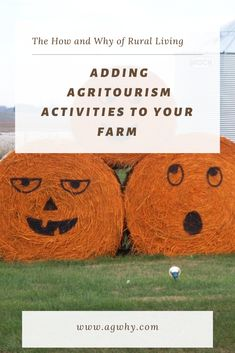 Adding agriculture based activities to your small farm for additional income opportunities. Modern Agriculture, Crop Production, Farm Business, Farms Living, Small Farm, Farm Life, Country Life, Tourism, Ads